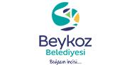 1525861175_images_beykoz